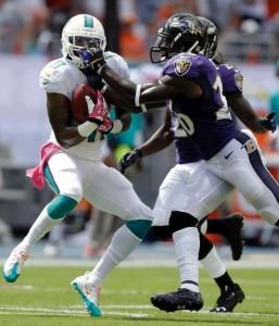 Photo Courtesy of Dolphins.com